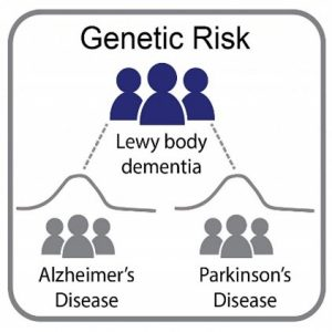 Genetic risk Diseases picture